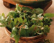 roka ve kisnis salatasi